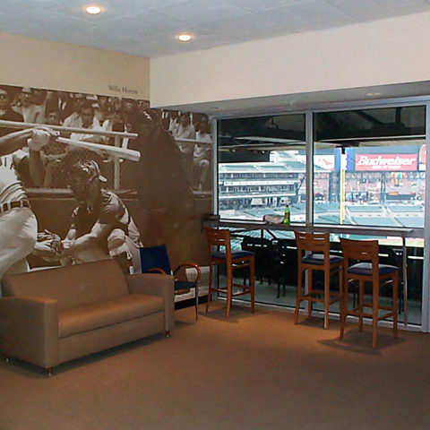 Comerica Park Box Seating