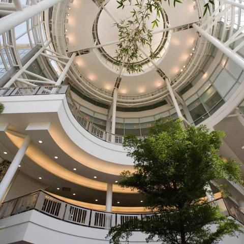 Frankel Cardiovascular Center Atrium